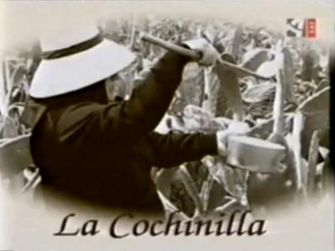 """La Cochinilla """"Canarias"""" (Artesanía)"""