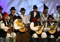 XXX Festival Folclórico de Maspalomas 2010. AF Labrante (Gran Canaria)
