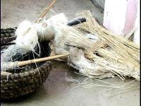 Cultivo, transformación y tejido del lino en La Palma (1ª Parte)