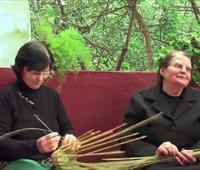 Saberes, semillas, sabores y sonidos. Mujeres Rurales de Gran Canaria