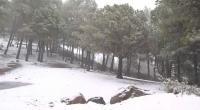 Gran Canaria: Cae la Nieve