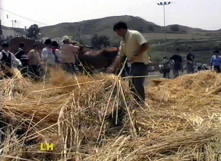 Día de Canarias (Caideros - Gáldar) (3ª Parte)